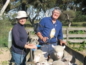 Rob and Marg Agnew, farmers from WA