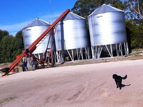 Silo's on farm at Lucindale South Australia