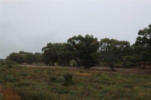 Mckenna's Creek