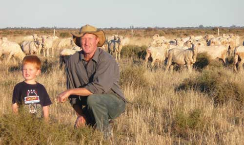 Greg and Fergus Bear with Sheep, Loddon Vale, Vic