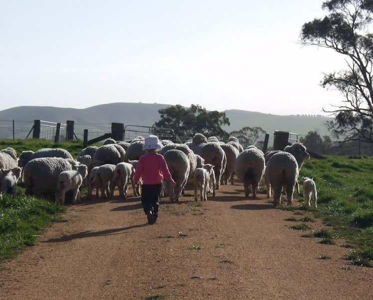 KT enjoying farm life