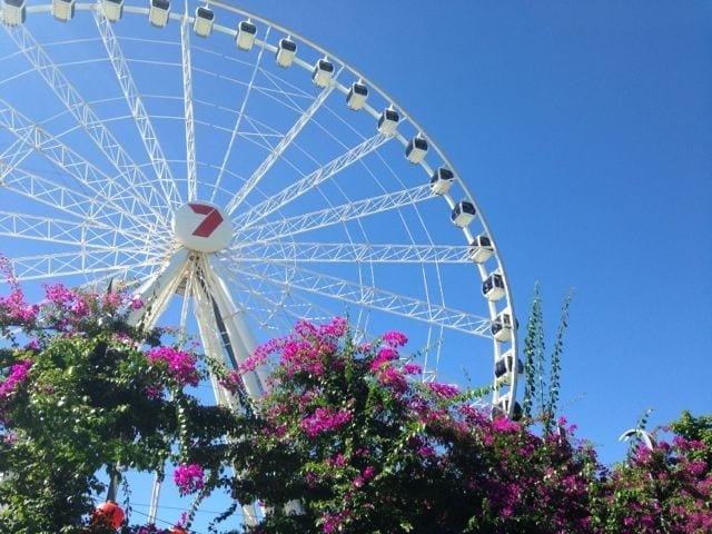 The Brisbane Ferris Wheel
